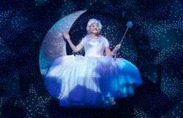 Cinderella Offers Something For All At New Wimbledon Theatre